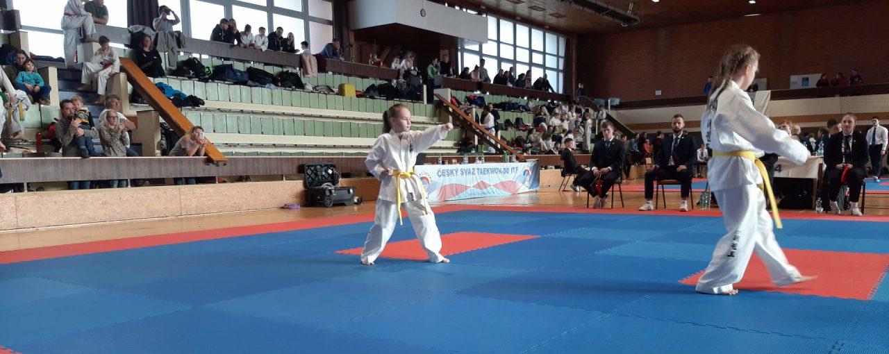 Taekwondo na Valentýna? Pohár ČST ITF!