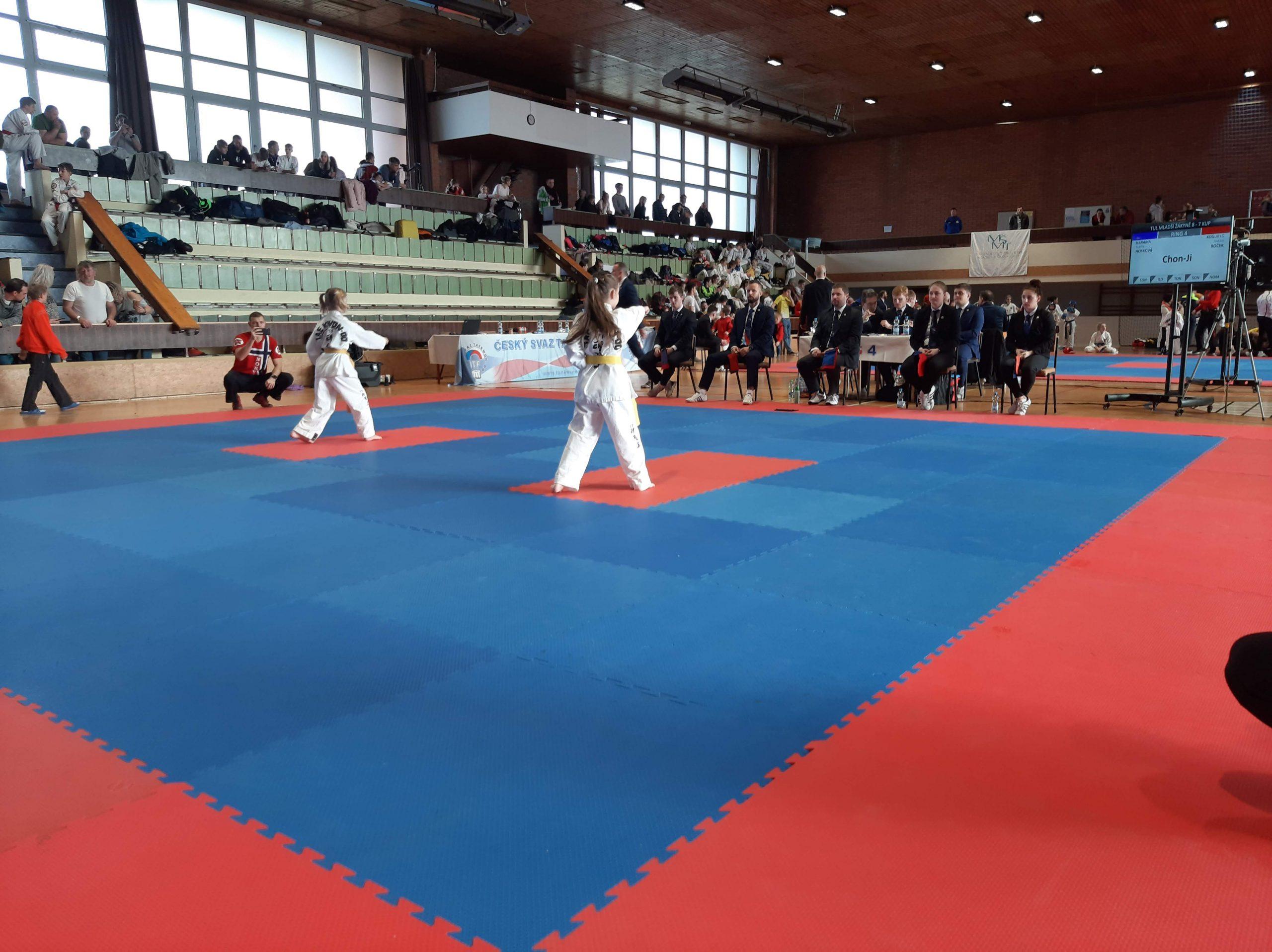 Zkouška začala slibem taekwondo